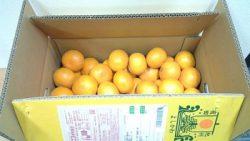 画像:投稿「和歌山からみかんが届きました♡」のサムネイル画像