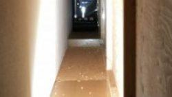 画像:投稿「シューティングレンジオープン!!!」のサムネイル画像
