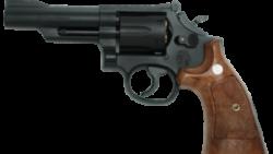 画像:投稿「タナカ S&W M19 4inch Combat magnum HW Ver.3」のサムネイル画像
