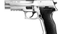 画像:投稿「マットステンレス・フィニッシュのP226改良モデル」のサムネイル画像